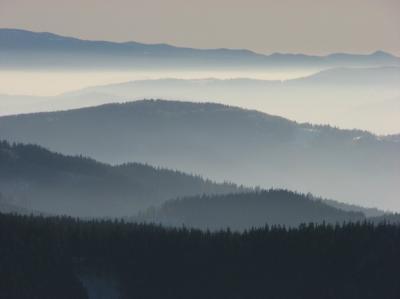Monitoring a ochrana velkých šelem v Západních Karpatech
